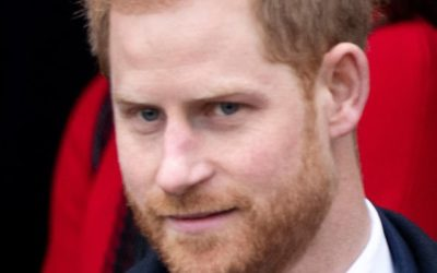 Is Prince Harry wearing hair loss CONCEALER? Hair Expert warns Prince will be almost BALD in two years